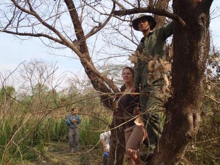 Looking for rhinos on safari in Chitwan