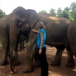 Volunteer with elephants in Laos