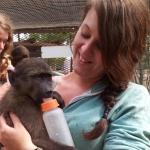 Emma Pound - volunteering with monkeys