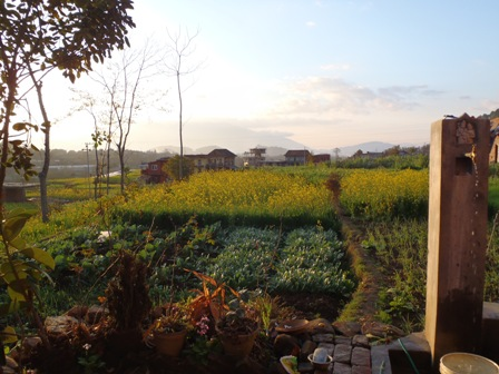 View over the field and tap from my host family house in 2011