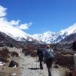 Trek and Tour the Himalayas
