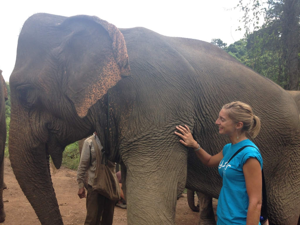 Volunteer in Laos with elephants