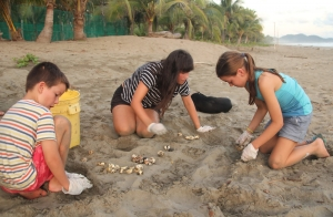 Family turtle conservation