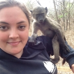 Monkey conservation