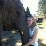 Elephant conservation in South Africa