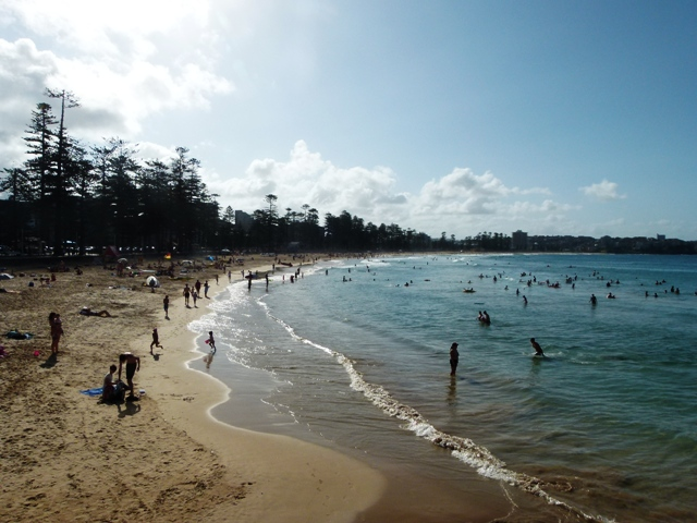 Manly beach view