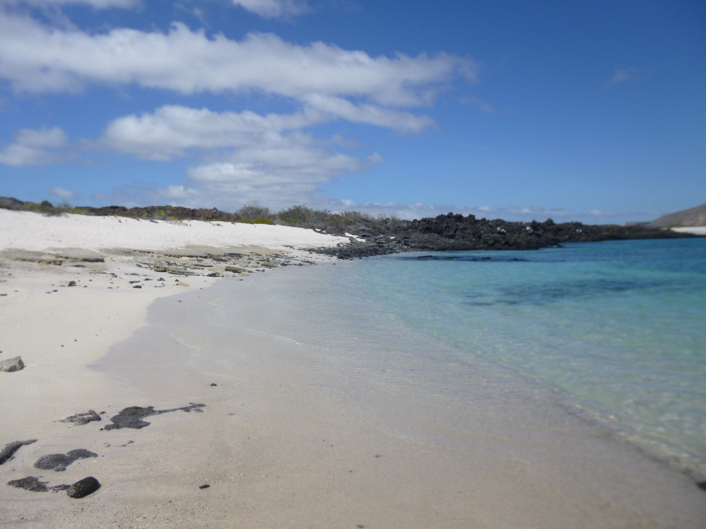 Beach heaven in the Galapagos