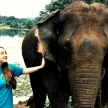 Family volunteering with elephants in Laos