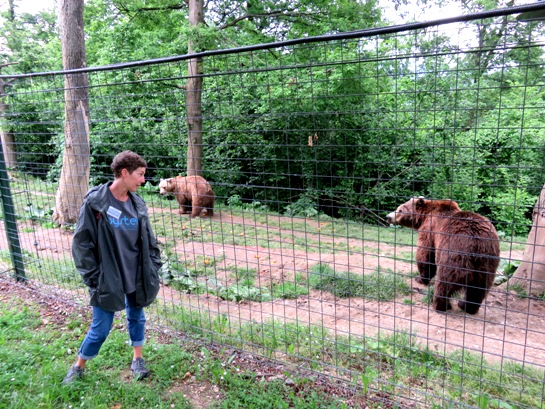 A volunteer at the bear sanctuary in Romania