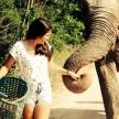 Elephant sanctuary volunteering in Thailand