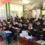 SA teaching