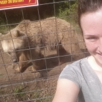 Volunteer with bears in Romania
