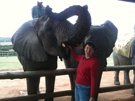 Volunteer with elephant on Kwantu game reserve, South Africa