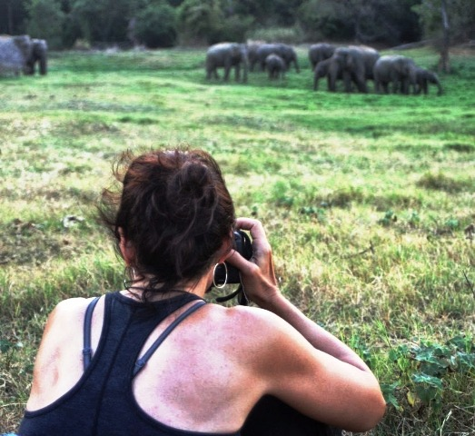 Watching Elephants in WG Lake (14)