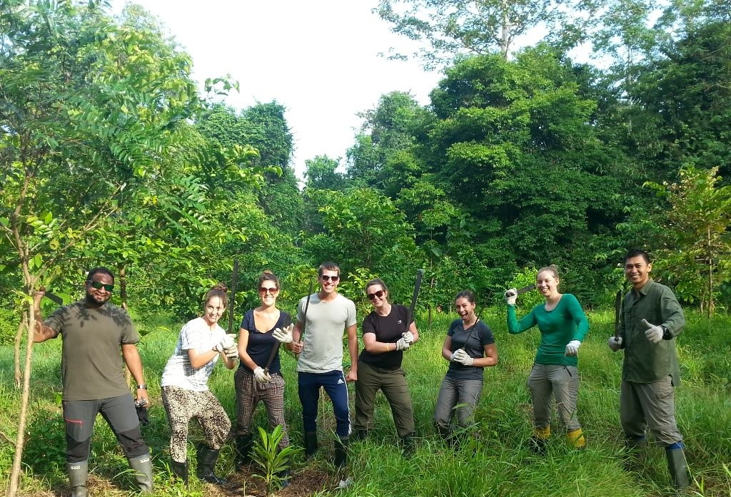 Wildlife conservation in Borneo
