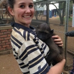 Volunteering with baboons