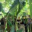 Zoo assistant internship in Malaysia