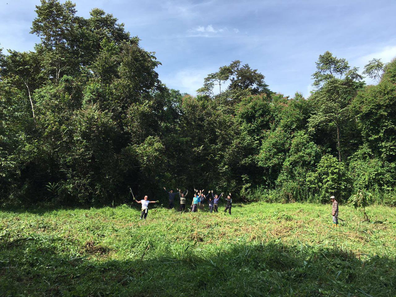 Clearing vegetation in Borneo
