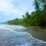 tropical beach edit